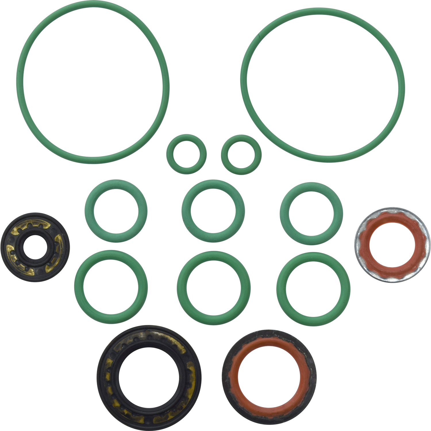 Rapid Seal Oring Kit RS 2564 1