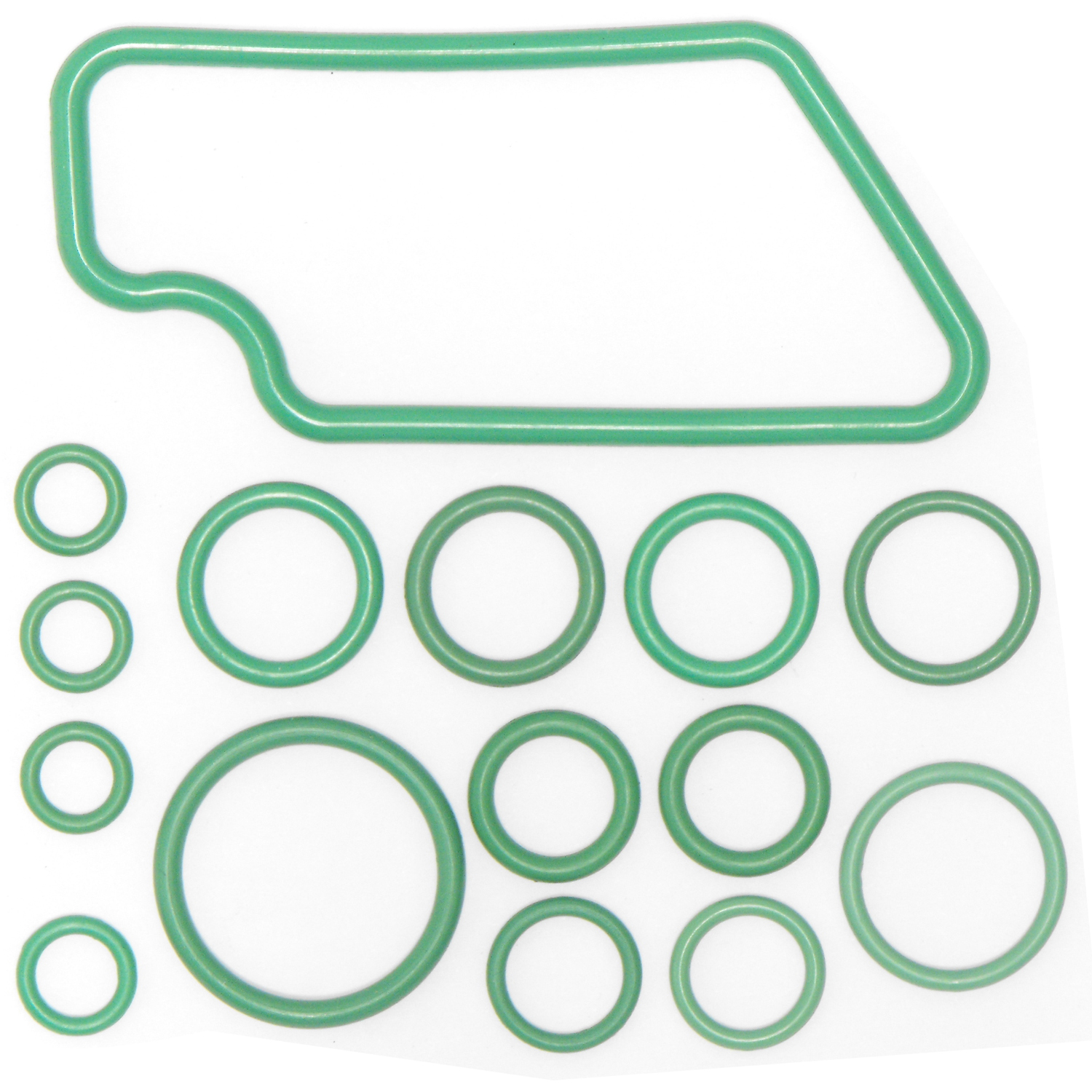 Rapid Seal Oring Kit RS 2632 1
