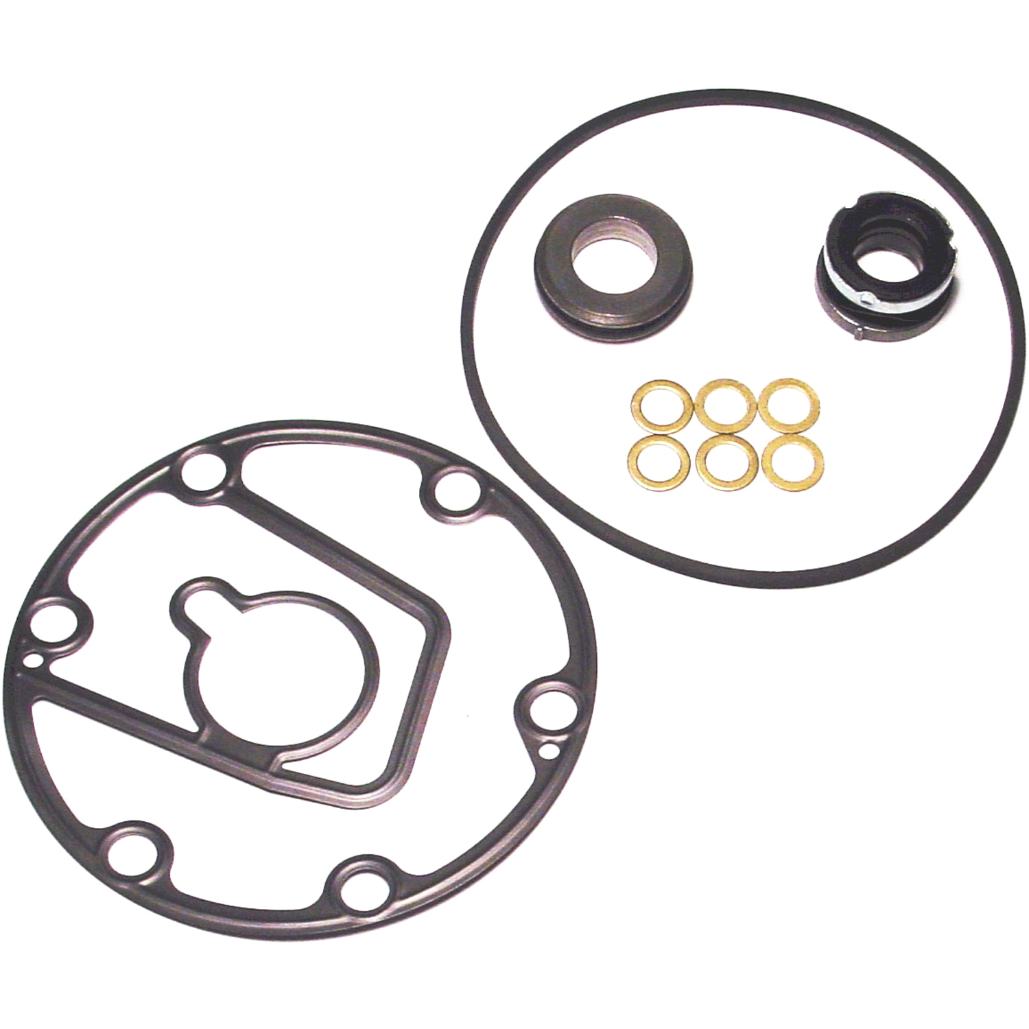 Shaft Seal FS6 WITH GASKET