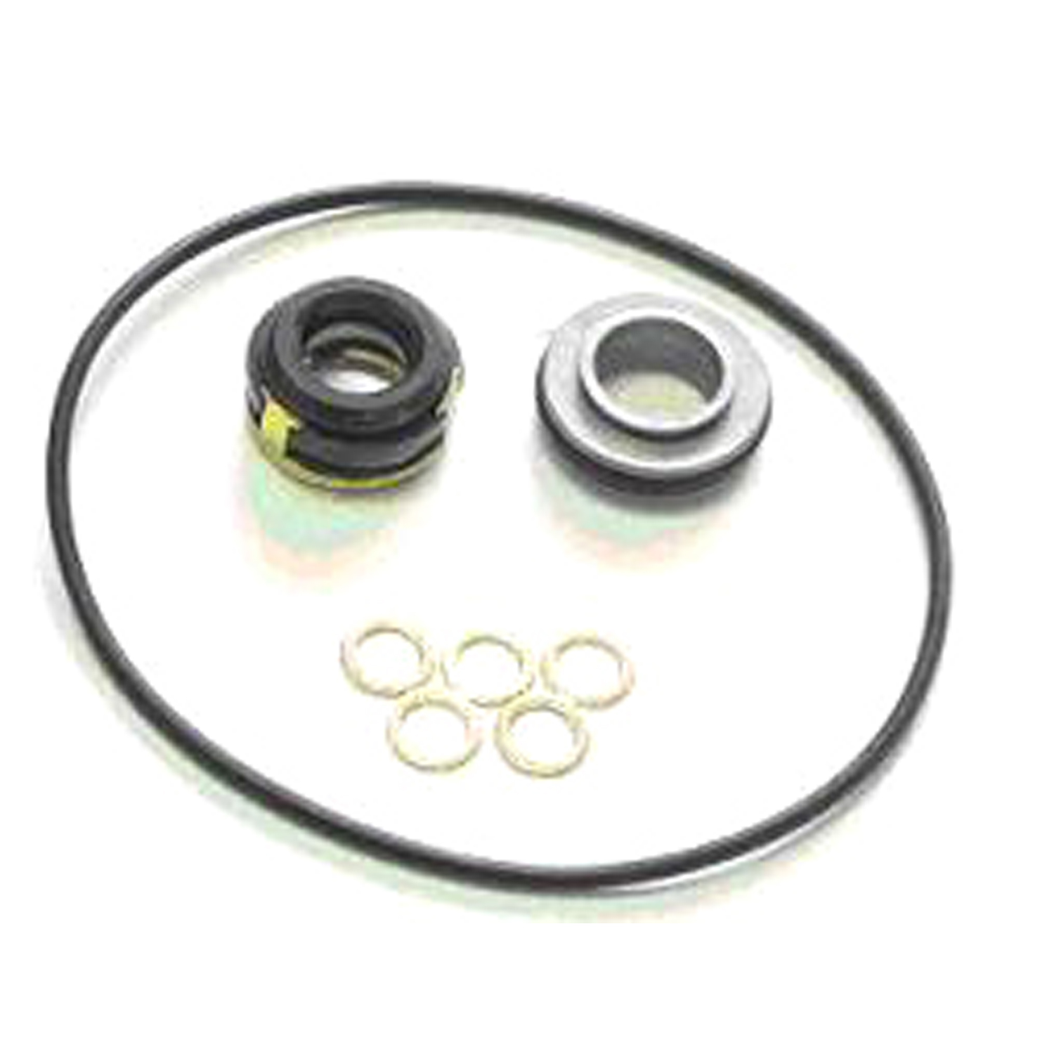 Shaft Seal NIPP 10P08E COIL TYPE