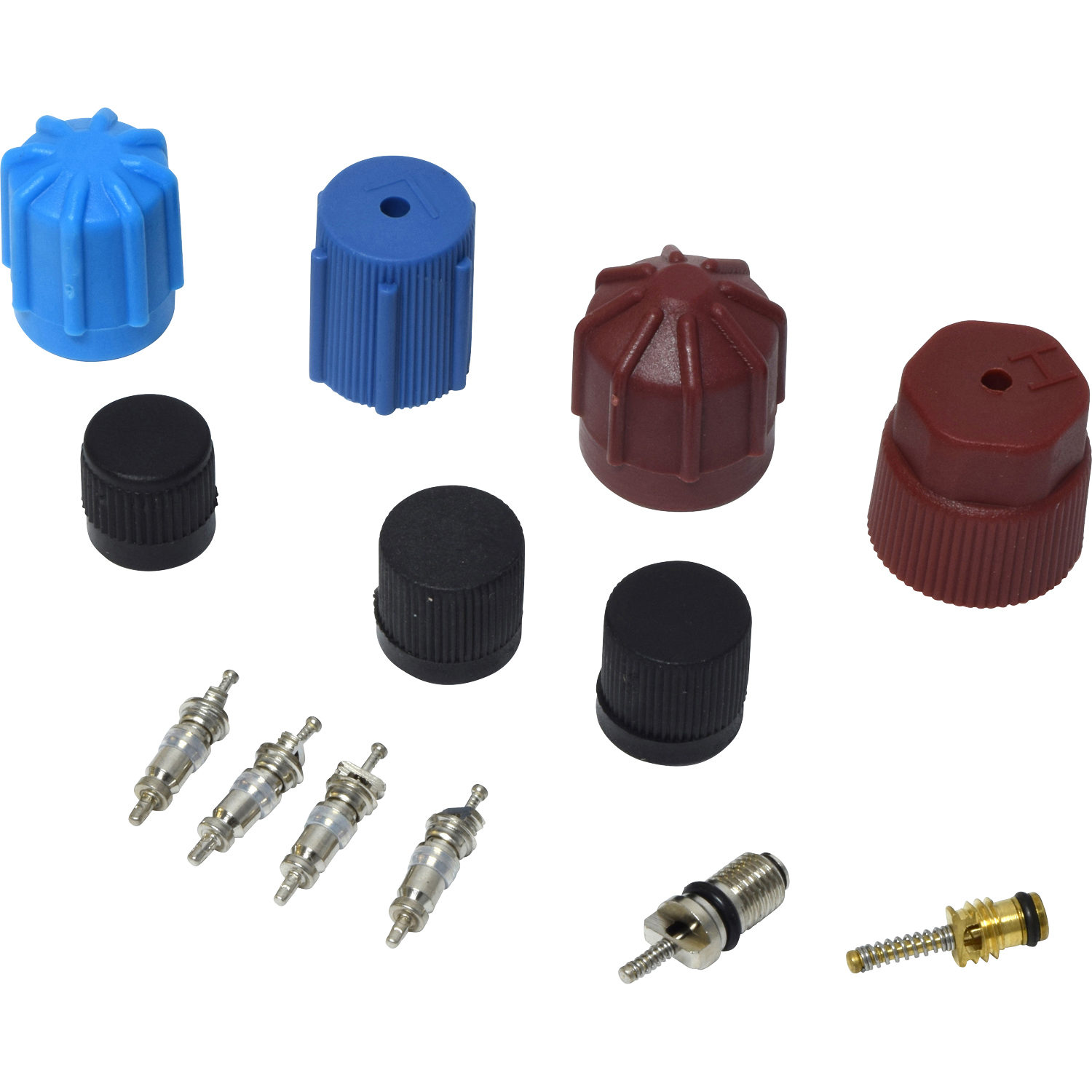 Valve and Cap Kit VC 2903C