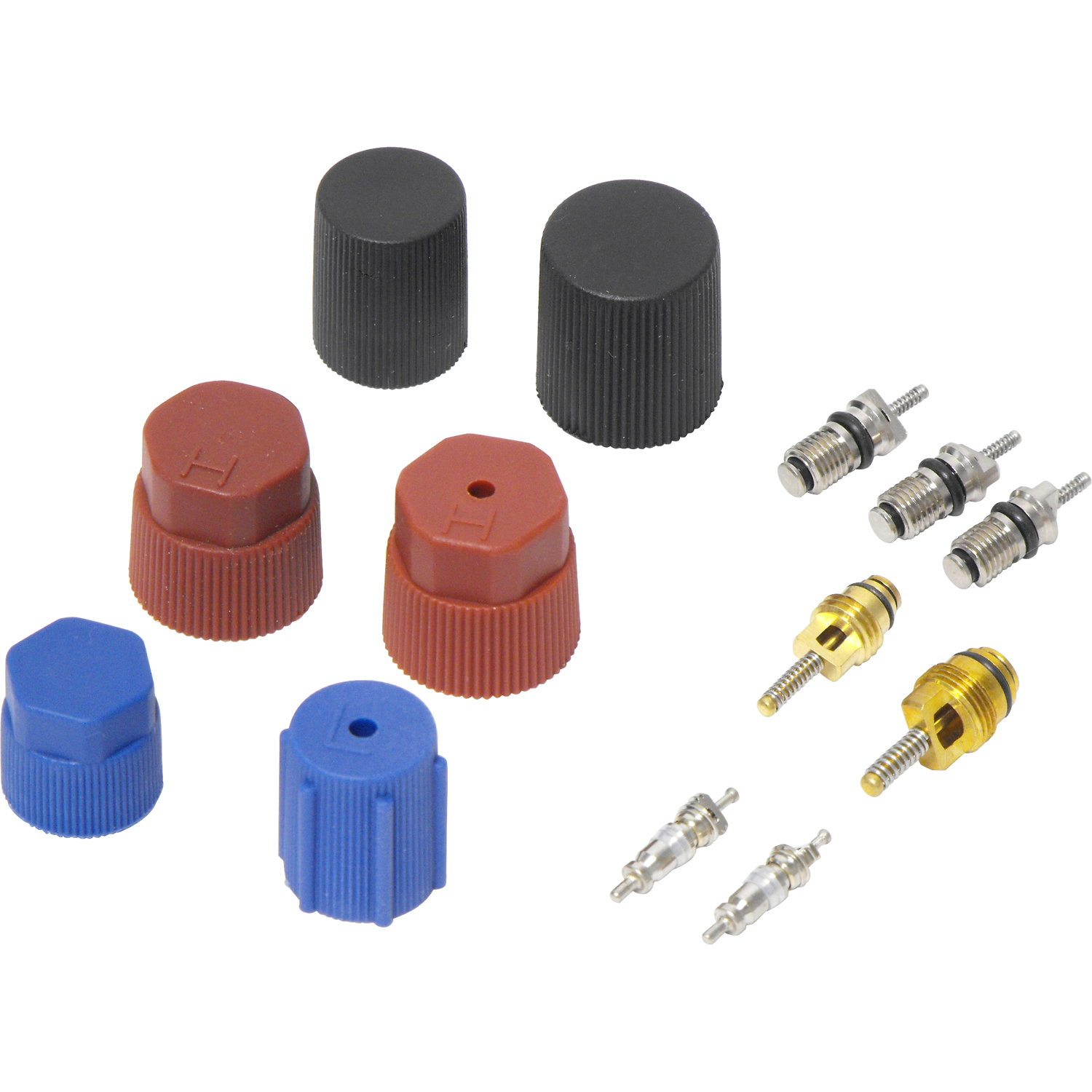 Valve and Cap Kit VC 2906