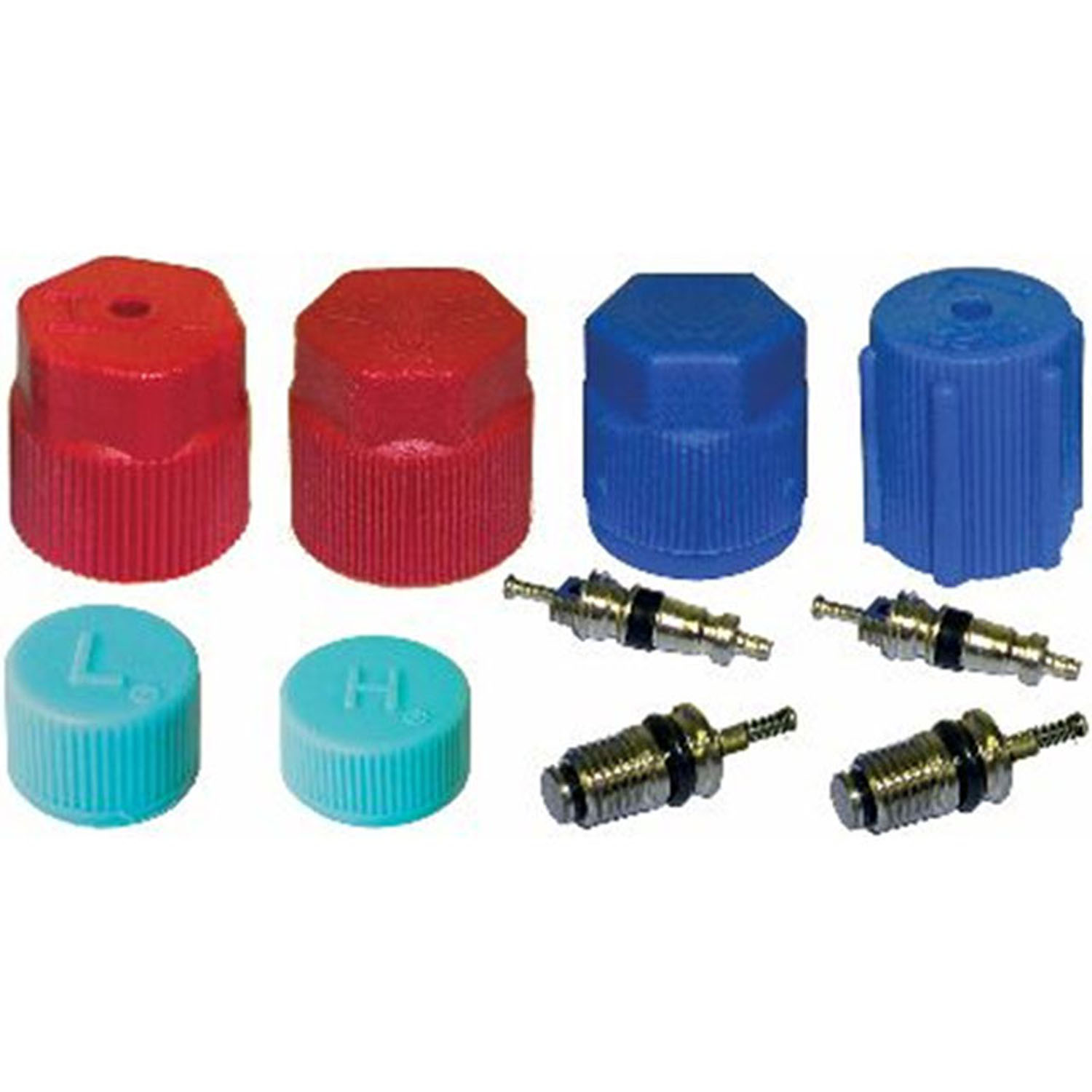 Valve and Cap Kit VC 2909