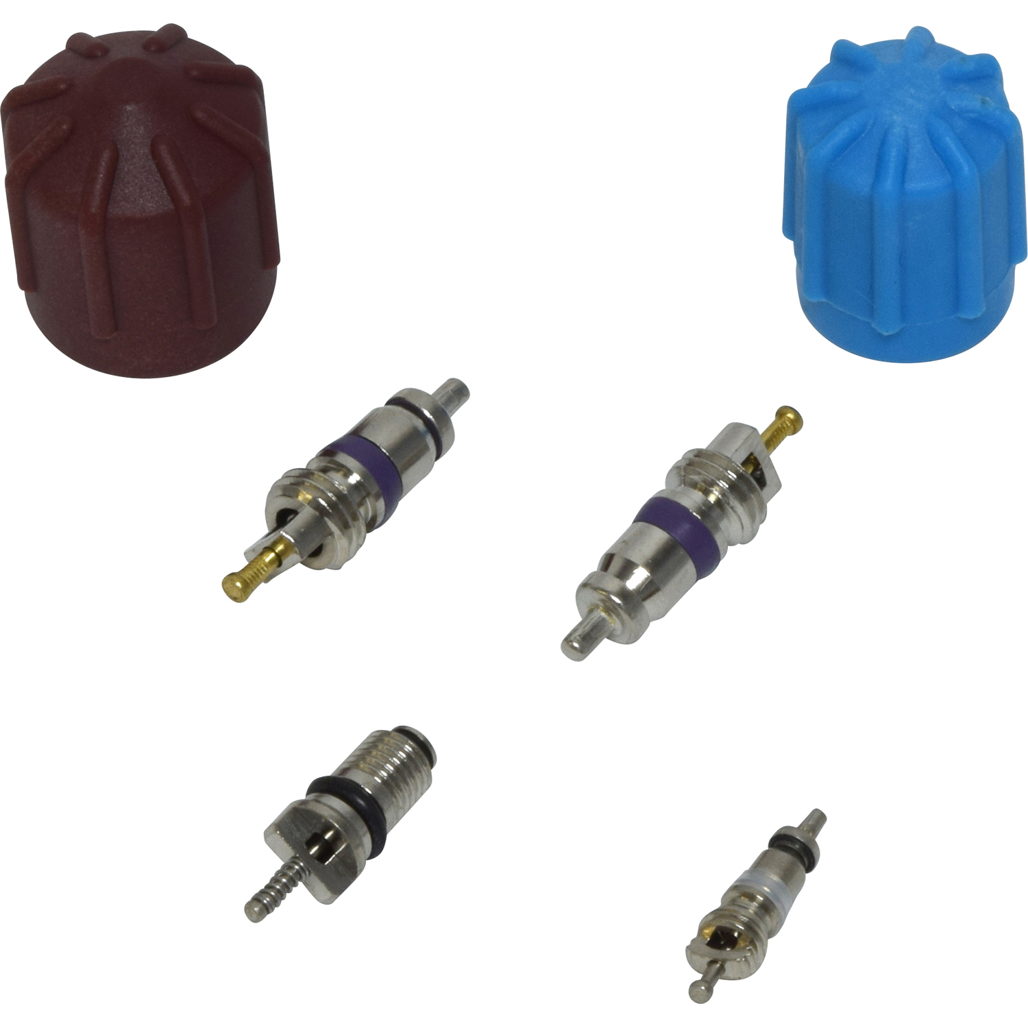 Valve and Cap Kit VC 2911C