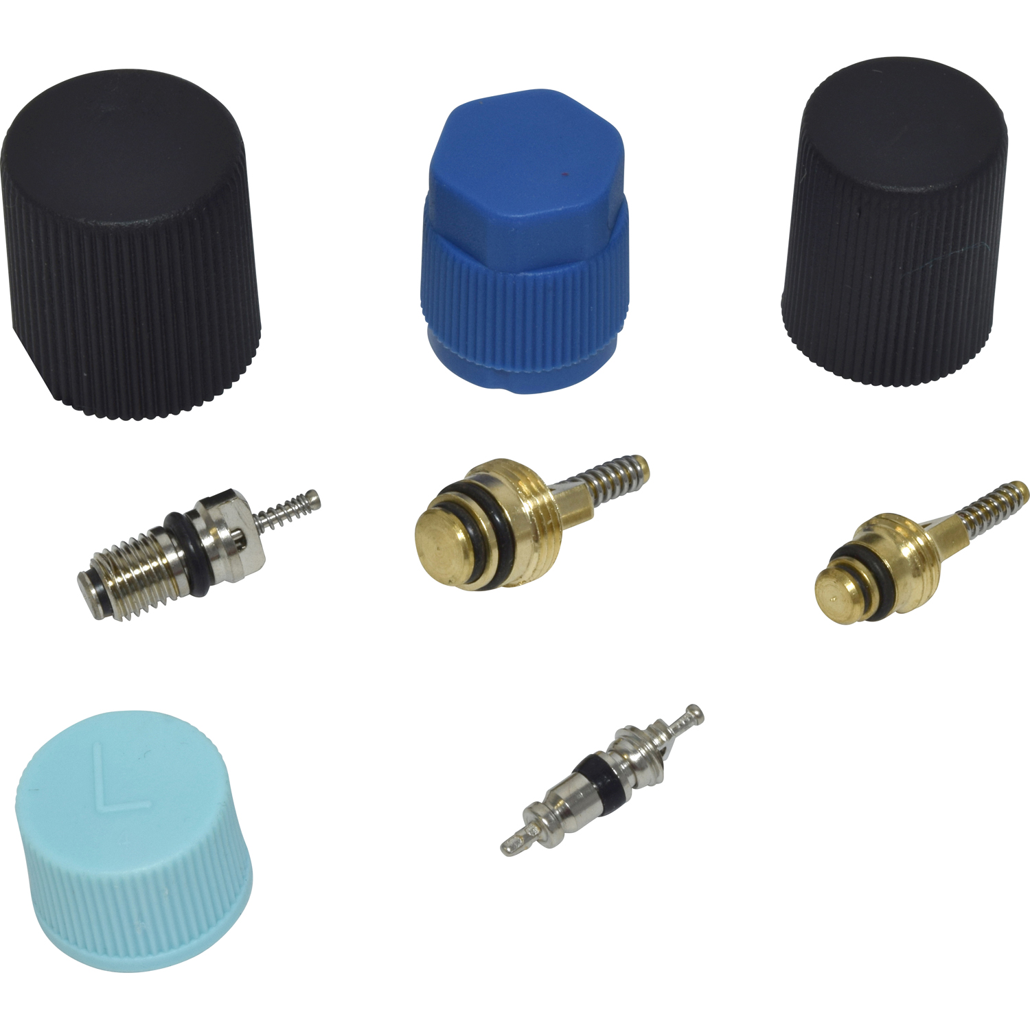 Valve and Cap Kit VC 2914C